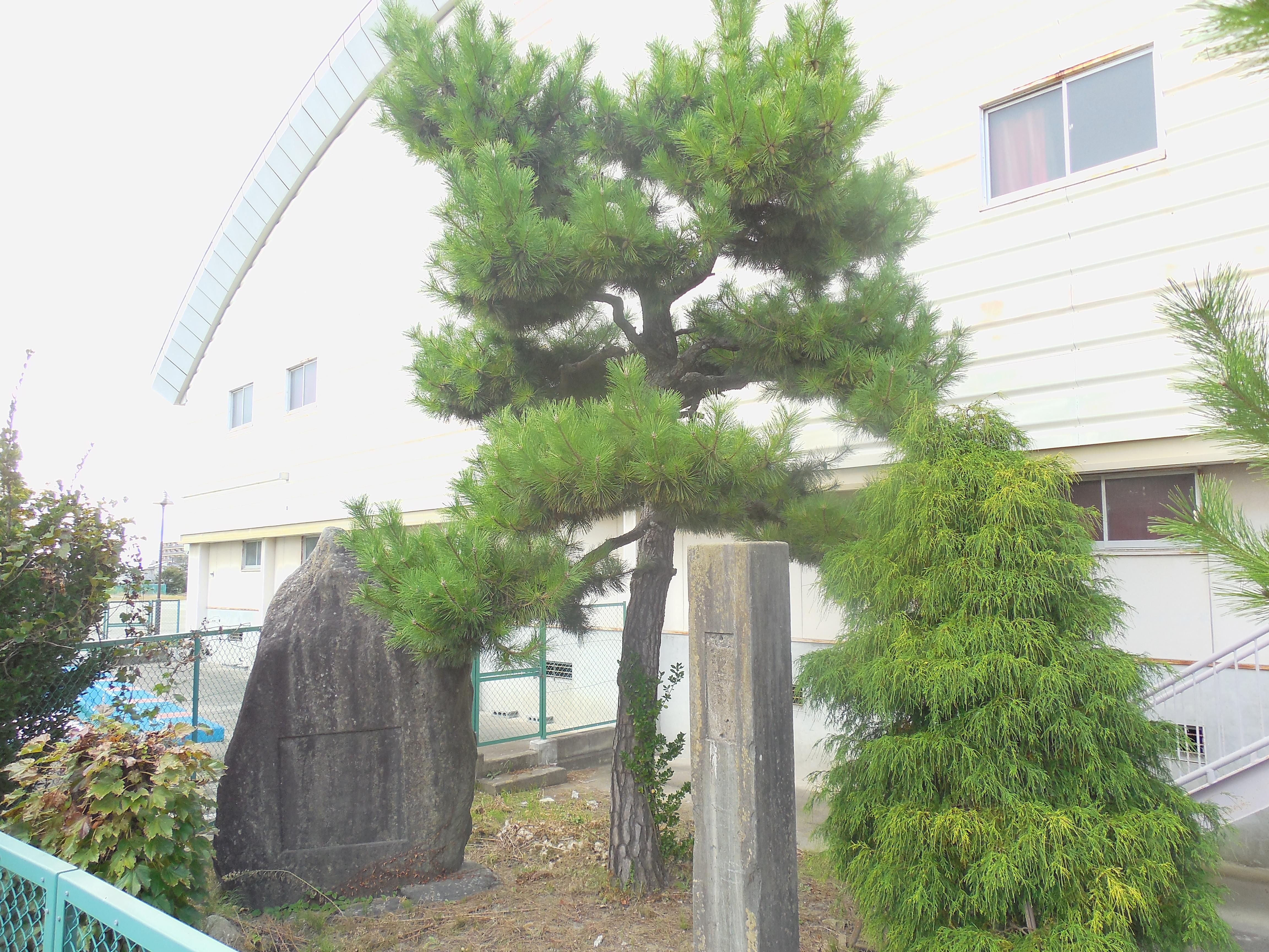 住吉小学校(仙台藩米蔵跡)