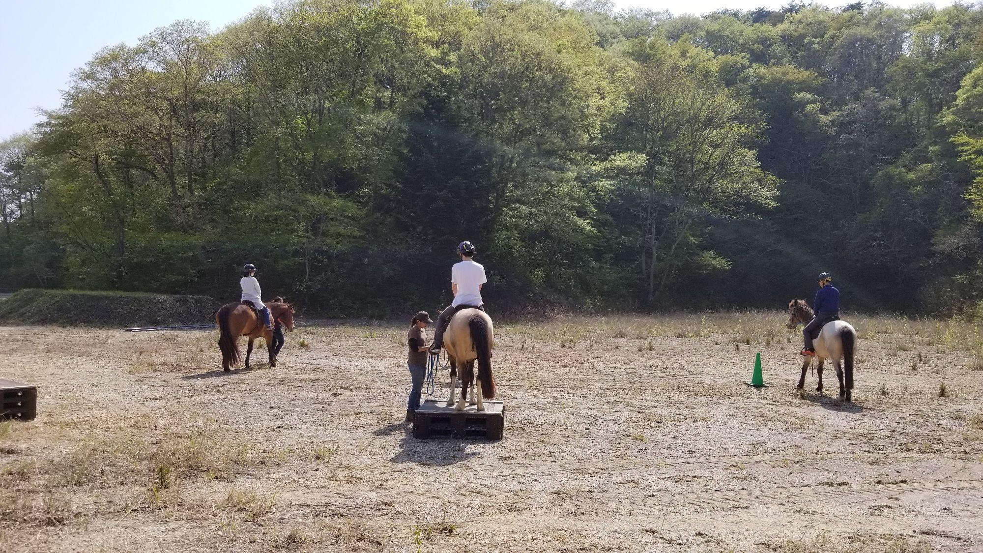 【東松島市】乗馬で牧場内を散策プロムナード【コース番号:70005】
