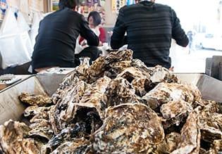 松島 さかな市場