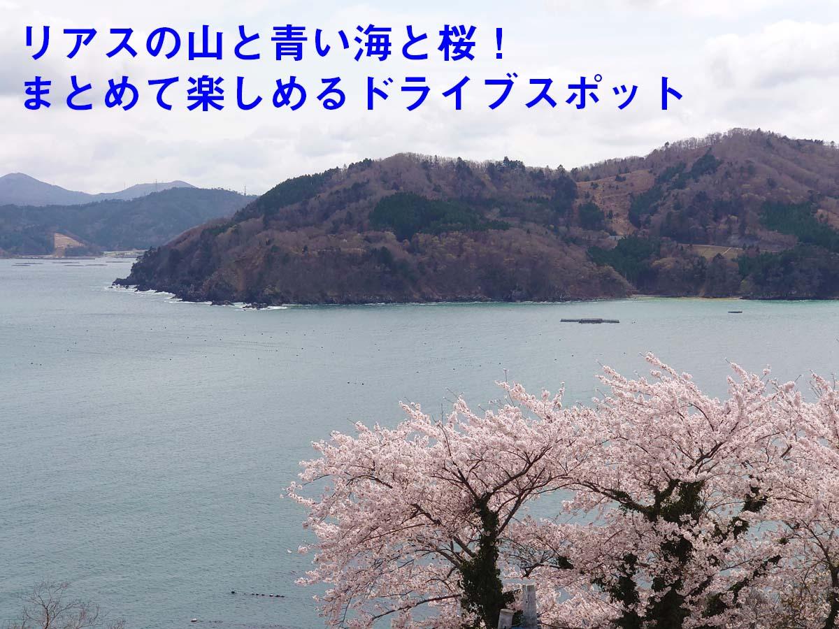 リアスの山と青い海と桜をまとめて楽しもう