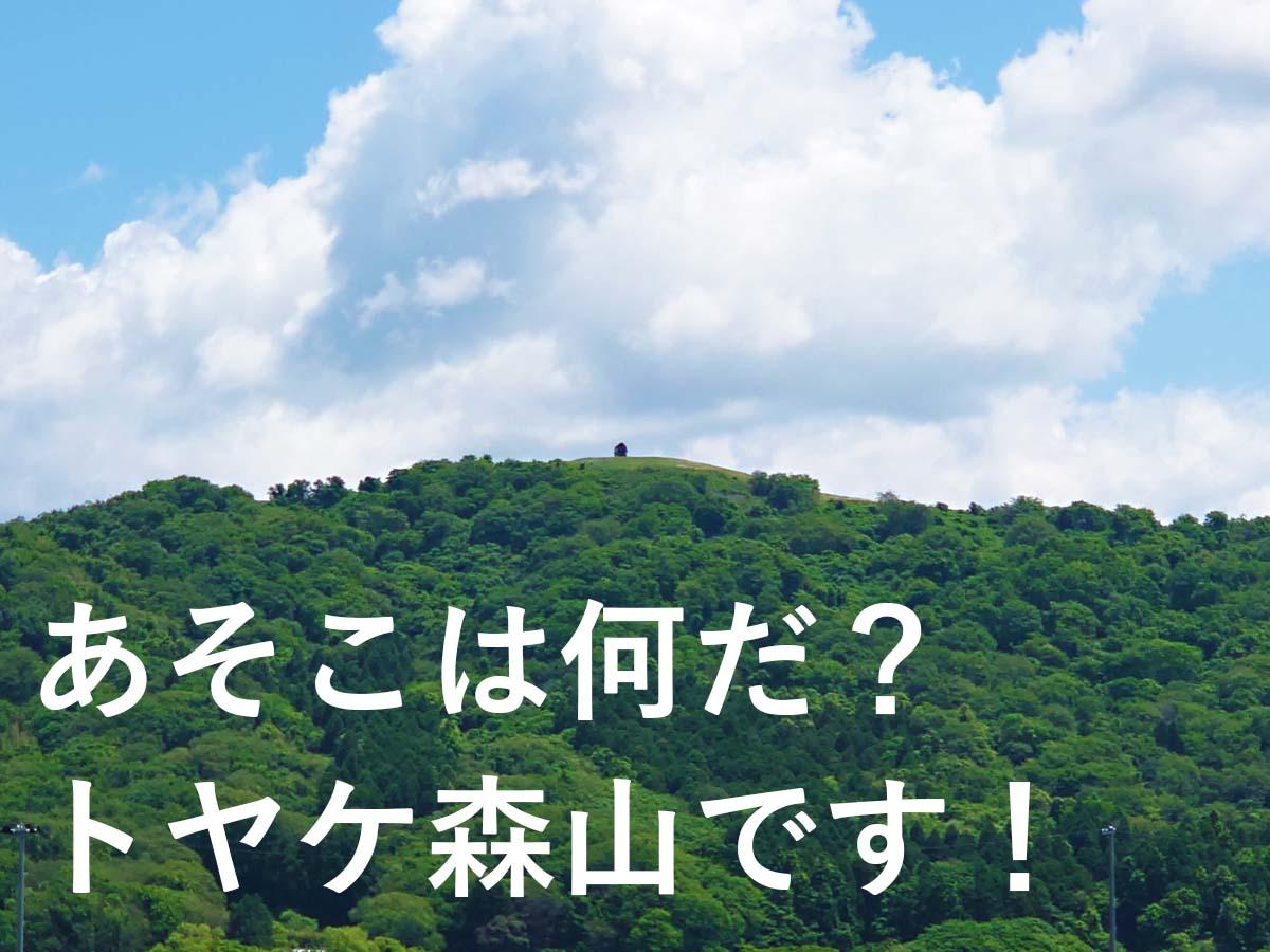 トヤケ森山遠景