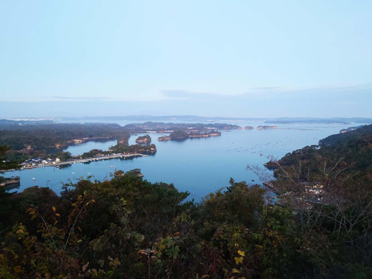 太田か森からの眺め